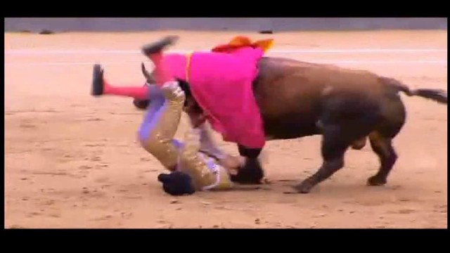 Sangue nell'arena de plaza de toros de Las Ventas a Madrid