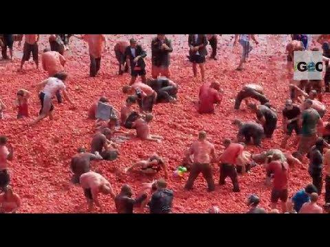 Buñol 2014 / Tomato War: La Tomatina