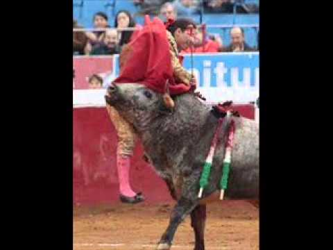 Torera messicana ferita durante corrida