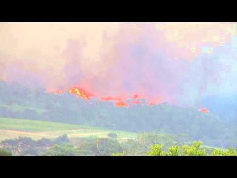 Città del Capo: Tornado di fuoco bruciano la foresta di Tokai