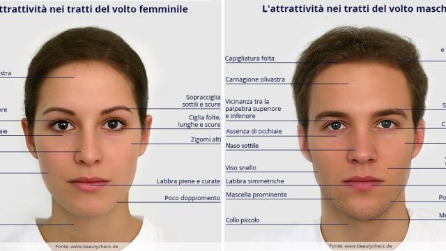 L'Attrattività nei tratti del volto