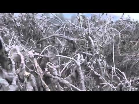 Indonesia: il vulcano Sinabung è prossimo all'eruzione