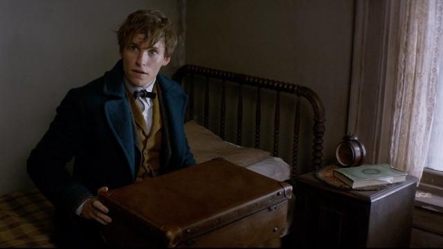"""Fantastic Beasts"": torna il magico mondo di J.K. Rowling"