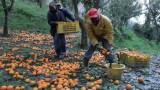 PIL sommerso vale 540 miliardi:1/3 dell'economia italiana viaggia in nero