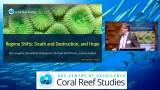 Indagini subacquee ed aeree provano lo sbiancamento della Grande Barriera Corallina