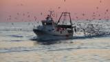 Rilasciati i due pescherecci mazaresi sequestrati in Egitto