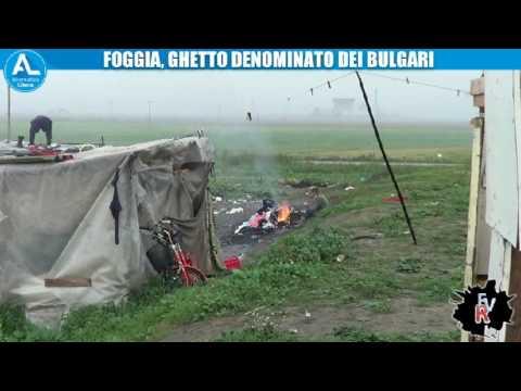 """IL """"GHETTO BULGARO"""" DI BORGOMEZZANONE"""