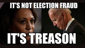 IT'S NOT ELECTION FRAUD, IT'S TREASON