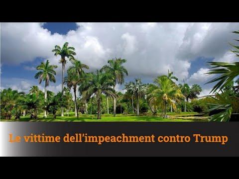 LE VITTIME DELL'IMPEACHMENT CONTRO TRUMP